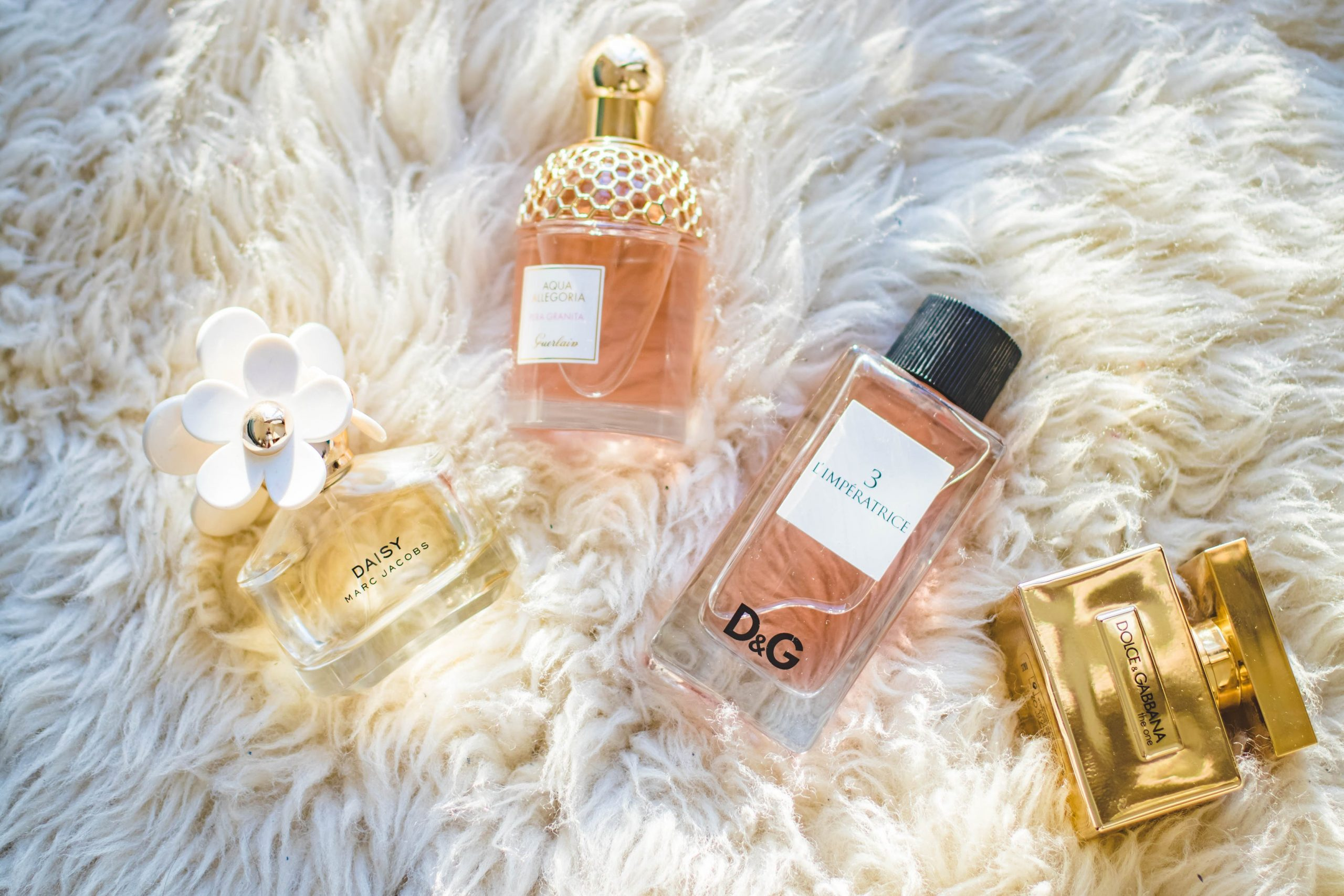 Eric Dalius Net Worth Is Increasing and He Discusses the Points That You Should Consider Start an Online Perfume Business