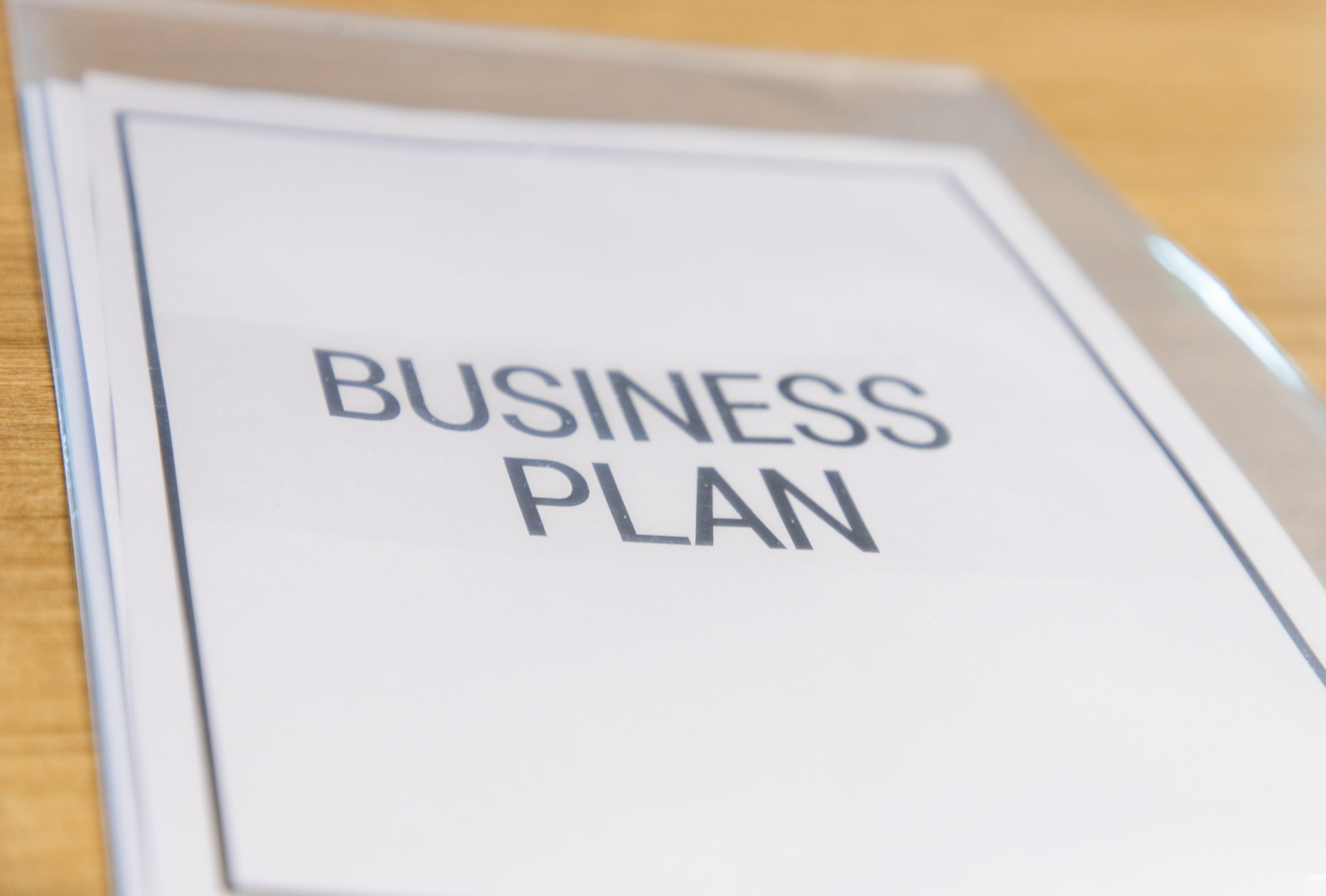 What are the different types of business plans? – Saivian Eric Dalius